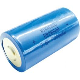DCW BAT/12, náhradní baterie pro fotobuňku ERIS, BFT
